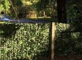 MW16006 Artificial Leaves Installed On The Fence