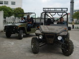 1100CC 4X4 Buggy to Tanzania