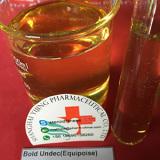 Boldenone Undecylenate CAS no.:13103-34-9 Equipoise (EQ)
