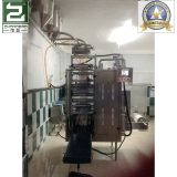 Ice Lolly Packing Machine In Algeria Customer′s Factory3