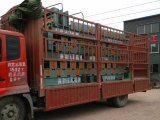 Loading the double layer and single layer roll forming machine to Nigeria