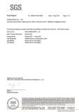 QITELE Grey Plastic ASTM-F963 11 Testing Report