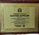 Audit supplier