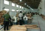 Workshop-Cutting Department