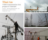 110kV Transmission line project in Vietnam