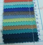Canvas Color Sample