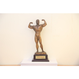 Excellence achievement award