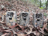 New hunting camera/game camera-Economy