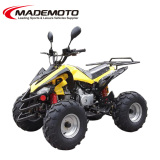 50cc China Best Selling ATV Quad Bike(AT0525)