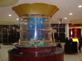 Large Cylindrical Fish Tank