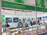Dental South China 2017
