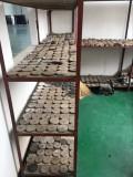 shenlian factory 9