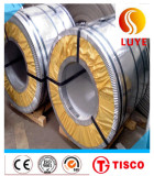 Hastelloy C-22 Alloy Steel Coil and Strip N06022