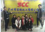 the scc paint sales tema