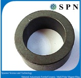 Ferrite Customized Magnet rings