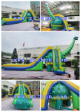 inflatable water slide with pool/Design Funny Adult Size Giant Inflatable Water Slide