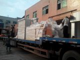 extrusion machine delivery scene by taizheng machine