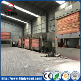 Commercial Plywood in Pre-press/ Cold Press