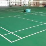 Badminton Stadium in Indonesia