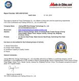 TUV audited report