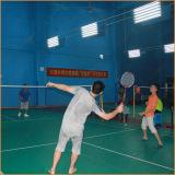 Badminton game