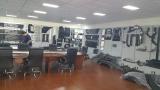 company showroom