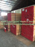 wood in stock for mandolin