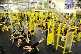 gym club-03