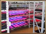 LED Timer factory ′s Aging workshop