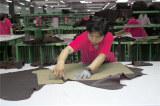 factory circumstance