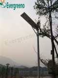 Integrated solar street light case in Africa