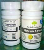 Extract 100% Hca Garcinia Cambogia Weight Loss Capsule Fruta Planta Life