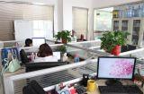 sales Office Team