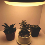 Led grow light for plant cultivation
