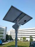 solar fly hawk light
