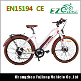 Stylish New Model City Electric Bike for Lady with Factory Price