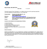 TUV SUD Inspection Report