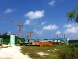 Maldavies 05 Sets Tower Cranes Finished Installation Work