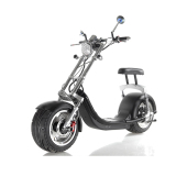 New harley 2 wheel 1000W city mobility electric motorcycle