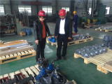 Foreign clients come to visit our factory and ordered