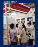 Yingli on Fair (7)