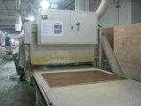 OPPEIN Factory Main Facilities---Sanding Machine