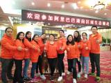 Okay Energy Sales PK Activity With Hunan Companies