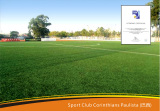 Artificial Turf Project in South America