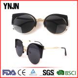 Fashion sunglasses(1311)