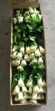 Packing of Rosebud Bouquet/Bush