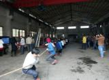 Company activity