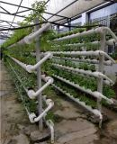 Green house automation system
