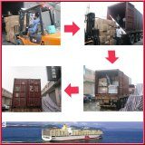 Professional operating procedures for sea shipping to USA