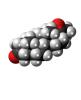 Testosterones Base Steroids Hormones